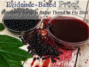 naturally nicole elderberry syrup