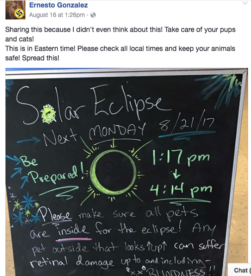 eclipse will not cause pet blindness